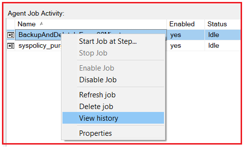 How to view the job history in SQL Server